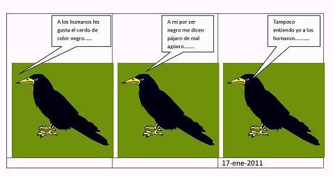 20110117204502-el-cuervo.......1.jpg