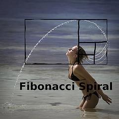20110405195858-espiral-de-fibonacci.jpg
