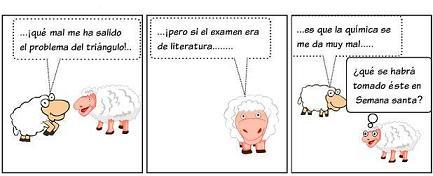 20110425214341-elcordero7.jpg