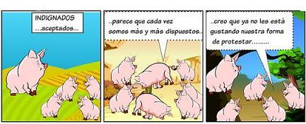 20110615204355-cerditos-4.jpg