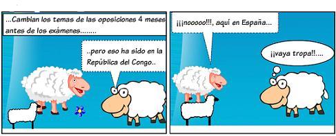 20120210182228-el-cordero-14.jpg