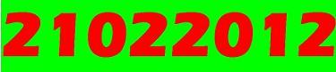 20120221202616-palindromo.jpg