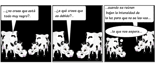 20120319210804-la-vaca-14.jpg