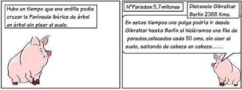 20121028154946-el-cerdito-9.jpg