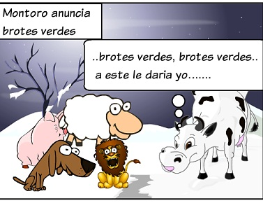 20130105125009-animales-11.jpg