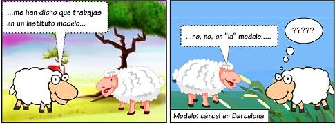 20131030222731-el-cordero-34.jpg