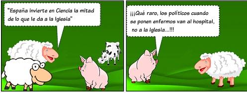 20131122210506-animales-17.jpg