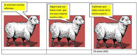 20110117182118-el-cordero....1.jpg