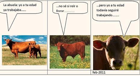 20110223155553-las-vacas-4.jpg