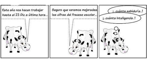 20111207162453-la-vaca-10.jpg