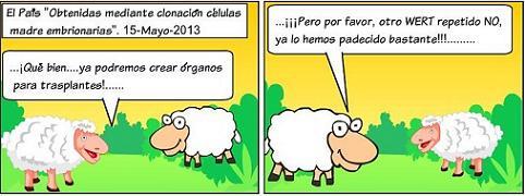 20130517161246-el-cordero-31.jpg